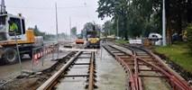 Wrocław: Trwa przebudowa torowiska na Osobowicach. Tramwaje wrócą na Wszystkich Świętych