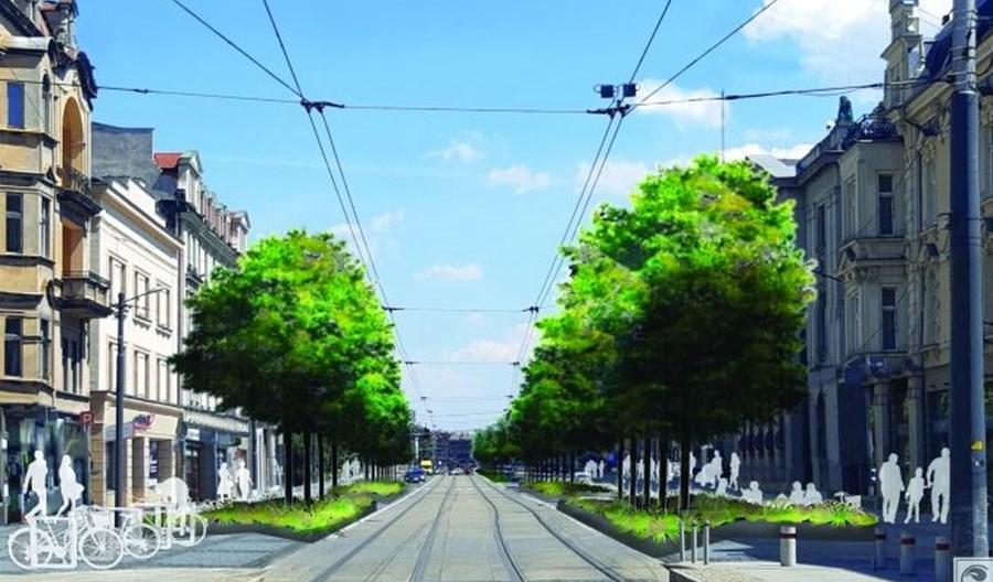 Katowice: Zazielenienie ulicy Warszawskiej – drzewa zamiast samochodów