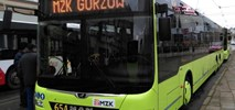 MZK Gorzów Wlkp. z ofertami na leasing sześciu autobusów