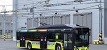 Trolejbusy Solaris-Skoda jadą do Saint-Etienne