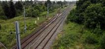 Łódź: Będzie przystanek kolejowy na Zarzewie. Opóźniona inwestycja znów w planach PKP PLK