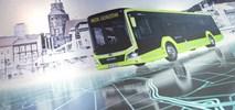 Gorzów: MAN z umową na leasing autobusów dla MZK