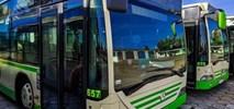 Chełm: W 2020 r. przewozy komunikacji miejskiej spadły o połowę
