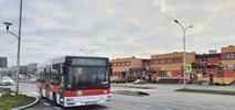 Ostrowiec Świętokrzyski z ofertami na dziewięć autobusów