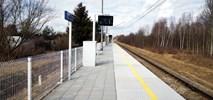 Łódź: Dwa nowe przystanki czynne od niedzieli, dwa kolejne wciąż w budowie