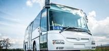 Strzegom z ofertami na zakup autobusów