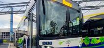 Kraków z kompletem 50 przegubowych elektrobusów