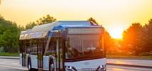 Zduńska Wola unieważnia przetarg na zakup elektrobusów