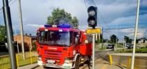 Złapani złodzieje, którzy rozkradają linię tramwajową do Lutomierska. W tle pytanie o to, czy linia kiedyś ożyje