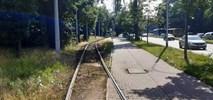 Wrocław kontynuuje tramwajowe remonty. Osiem przetargów