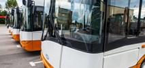 Debiut autobusów Solarisa w Sandomierzu. 5 dni bezpłatnej komunikacji