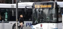 Powtórzone przetargi na autobusy w Szczecinie i Ostrołęce. Na rynku jest problem