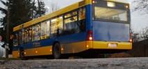 Pabianice: Duży wzrost popularności miejskich autobusów