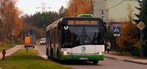 Białystok chce kupić 100 nowych autobusów. Co z koleją?