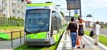 Będzie w Olsztynie więcej zielonych torowisk