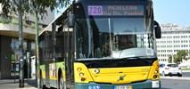 Bus sharing: Elastyczne telebusy szansą na równe możliwości komunikacyjne?