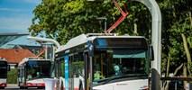 Gdynia szykuje się na autobusy na wodór