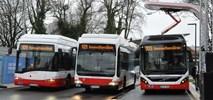 Hamburg stawia na bezemisyjność: przetestują różne autobusy