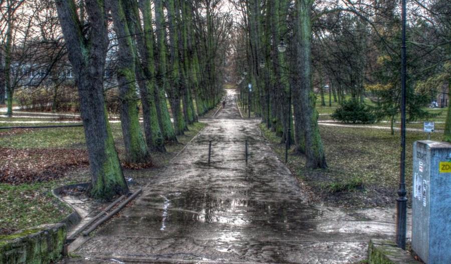 Nowa Politechniczna – a może tramwajem przez cmentarz?