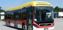 Połowa inowrocławskich autobusów zasilana alternatywnie