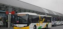 Koleje Mazowieckie na ratunek za likwidowane PKS-y?