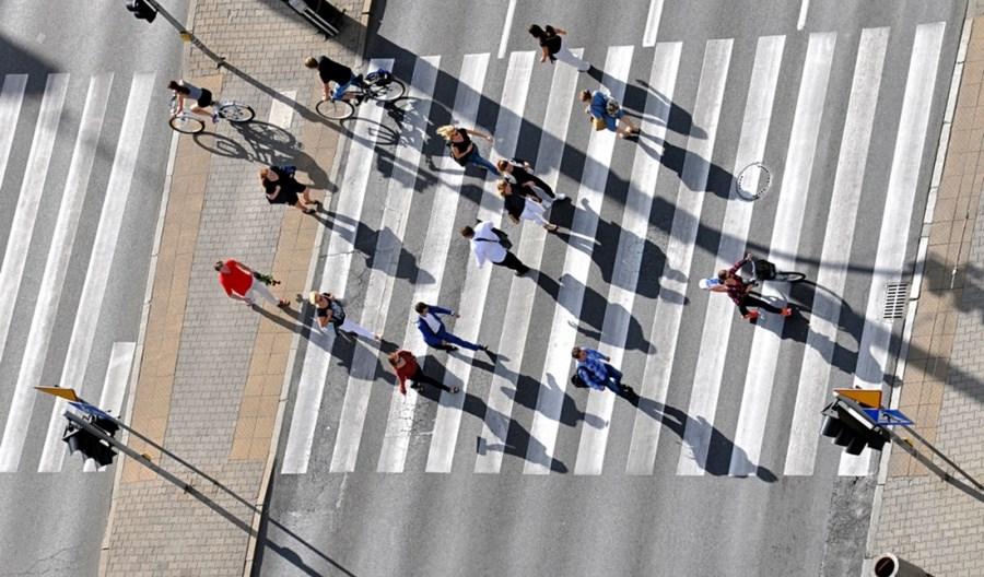 Raport MI o bezpieczeństwie pieszych. Prawo drogowe z kartonu