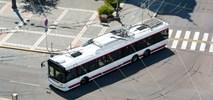 Solaris, mocny w autobusach, jest potęgą trolejbusową