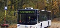 Toruń zamawia elektrobusy. Sześć, a może osiem
