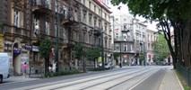 Kraków przekonuje się powoli. Zmiany wokół Plant dają efekty