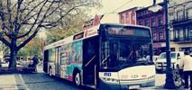 Ostrów Wielkopolski zamawia sześć autobusów elektrycznych