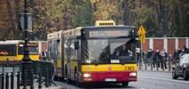 Warszawa: Komunikacja cmentarna na najwyższych obrotach – autobus co 45 sekund