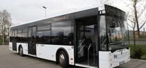 Lubin. DLA zaprezentowały autobus, choć wykluczono je z przetargu