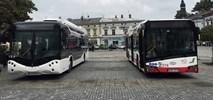 Nowy Sącz będzie kupował autobusy. W tym elektryczne?