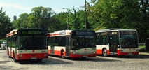 ZKM Gdańsk kupuje pięć krótkich pojazdów