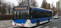 Jakie autobusy chce kupić MPK Kraków? Niskosmogowe…