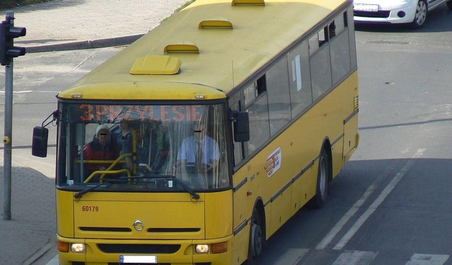 Bezpłatne autobusy z Lubina pojadą do Polkowic