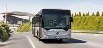Antonio Cavotta: Elektrobus Mercedesa będzie konkurencyjny