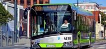Dwie oferty w olsztyńskim przetargu na autobusy