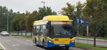 O Krętych Trasach Autobusów