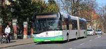 Szczecin chce przewoźnika, który ruszy z usługą… w tydzień