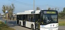 Toruń kupuje sześć autobusów