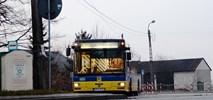 Pabianice: Autobus tańszy dla mieszkańców