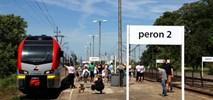 Łódzka Kolej bardziej Aglomeracyjna. Wracają weekendowe pociągi Widzew – Zgierz