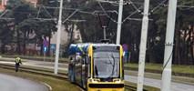 Przyszłość Torunia mocno tramwajowa. Do 9 km nowych tras