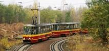 Łódź: Cięcia także na 1 listopada