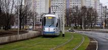 W Toruniu powstaje tramwaj na trawie. Cichszy i bezpieczniejszy