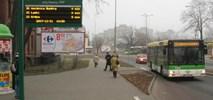 Zielona Góra. MZK chce wynająć pięć autobusów