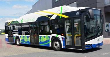 Rzeszów: Solaris z szansami na dostawy elektrobusów