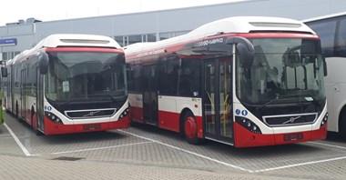Sosnowiec. Kolejne autobusy hybrydowe Volvo