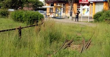Pabianice: Rozstrzygają się losy tramwaju